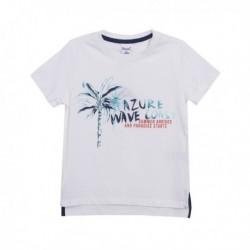 Camiseta palmera
