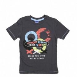 Camiseta/o m/c miami beach