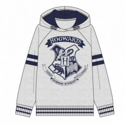 Sudadera con capucha brush fleece harry potter - CI-2200005349
