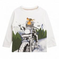 Camiseta tigre en moto