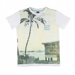 Camiseta basics-ALM-181099