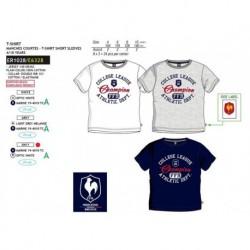 Camiseta manga corta 100% algodón-SCFI-ER1028-FFR