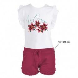 LOV-1021320801 La Ormiga ropa infnatil al por mayor Conjunto