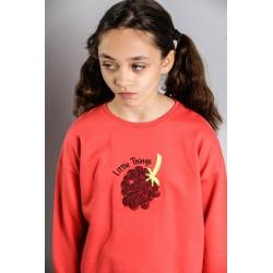 SMV-20569-1-UNICO Mayorista de ropa infantil Sudadera