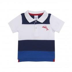 Polo con delfin almacen mayorista de ropa infantil, ropa de