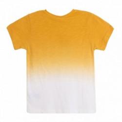 Camiseta amarilla lavada